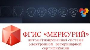 fgis_merkuriy